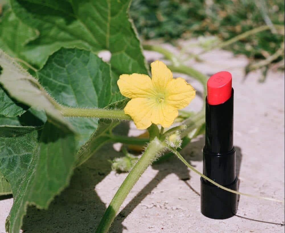 Arbonne Lipstick available for purchase